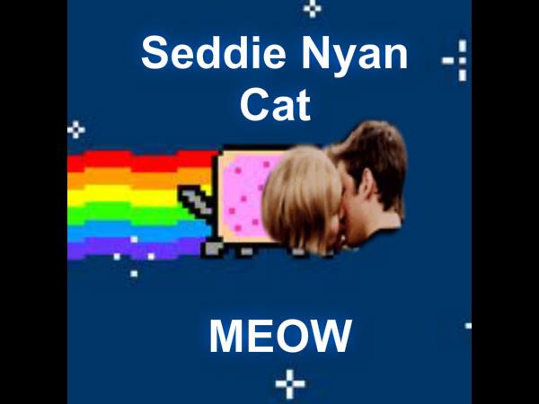 File:Seddie nyan cat.jpg