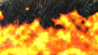 Rainy fire