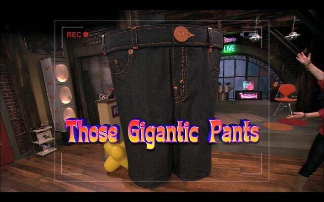 File:Pants23.jpg