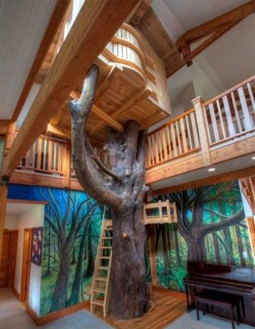 File:Inside a tree house.jpg