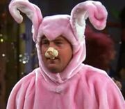 Chandler-bunny