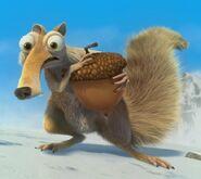 Scrat and acorn