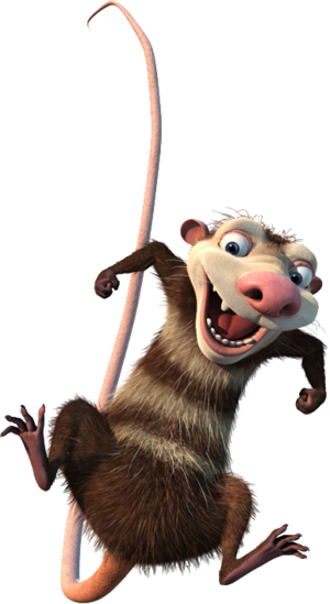 Opossum Ice Age