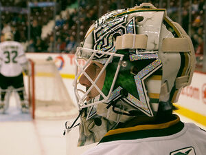 Andrew Raycroft's New Sparkle Mask
