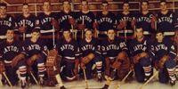1968-69 IHL season