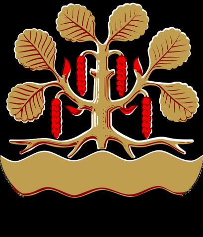 File:Leppävirta.png