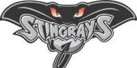 Hull Stingrays