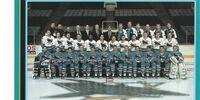 1993–94 San Jose Sharks season