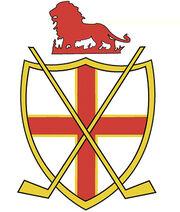 EIHA Logo.