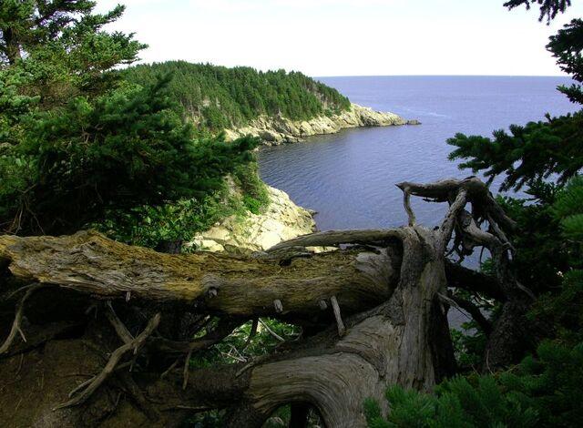 File:Cape Breton Island.jpg