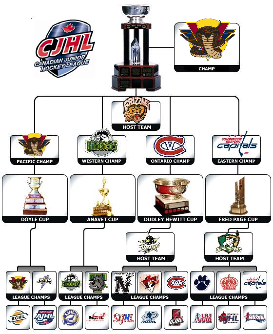 2009 Royal Bank Cup Flow Chart