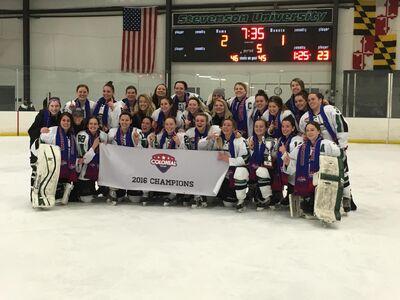 2016 CHC Tournament champions Stevenson Mustangs