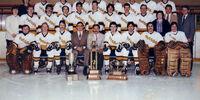 1982-83 Western Canada Intermediate Playoffs