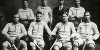Toronto Professional Hockey Club