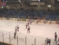 Greyhounds warmup