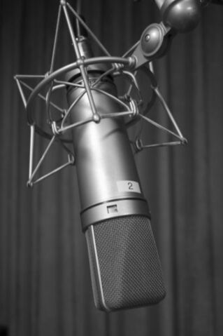 File:Microphone.jpg