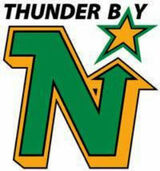 Thunder Bay North Stars logo