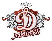 Dinamo juniors logo