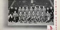 1938-39 IIL Season