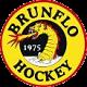 Brunflo IK