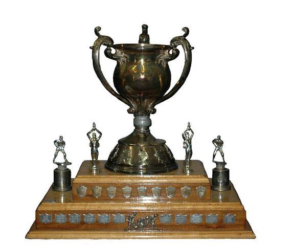 File:716px-Abbott cup.jpg