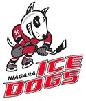 NiagaraIceDogs
