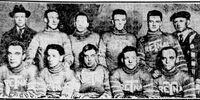 1918–19 Toronto Arenas season