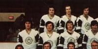 1972–73 New England Whalers season