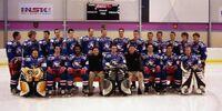 2004 AIHL season