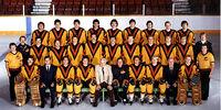 1980–81 Vancouver Canucks season