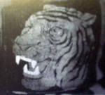 Hamilton Tigers (1921) Team Logo