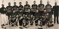 1938-39 AHA season