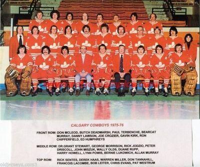 75-76CalCow