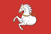 Pardubice Flag