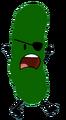 Pickle Error