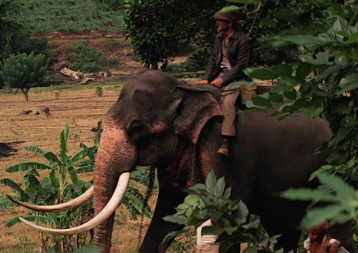 File:Elephant ride.jpg