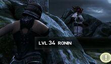 Ronin-san