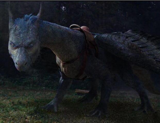 File:Saphira with Saddle.jpg