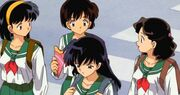 Kagome-friends
