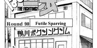 Futile Sparring