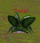 Chompa