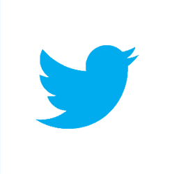 File:Twitter (Button).png