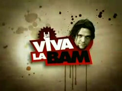 Viva La Bam Title Screen
