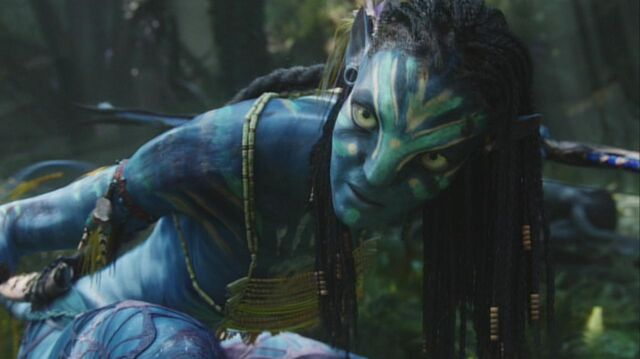 File:Neytiri protects Jake 3.jpg