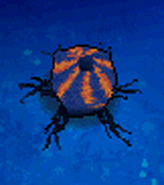 Glow Worm Pod