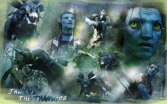 File:Avatar-avatar-10125894-1680-1050.jpg