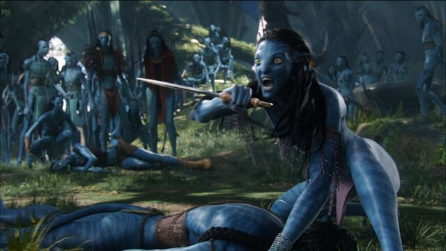 File:Neytiri protects jakes avatar.jpg