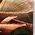 Thumbnail for version as of 21:05, November 7, 2009