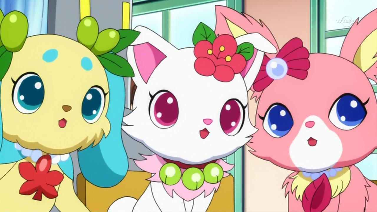 Jewelpet Species Jewel Pet Wiki Fandom Powered By Wikia