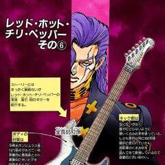 Description of Akira's guitar